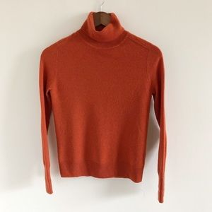 Everlane Cashmere Turtleneck Sweater XXS